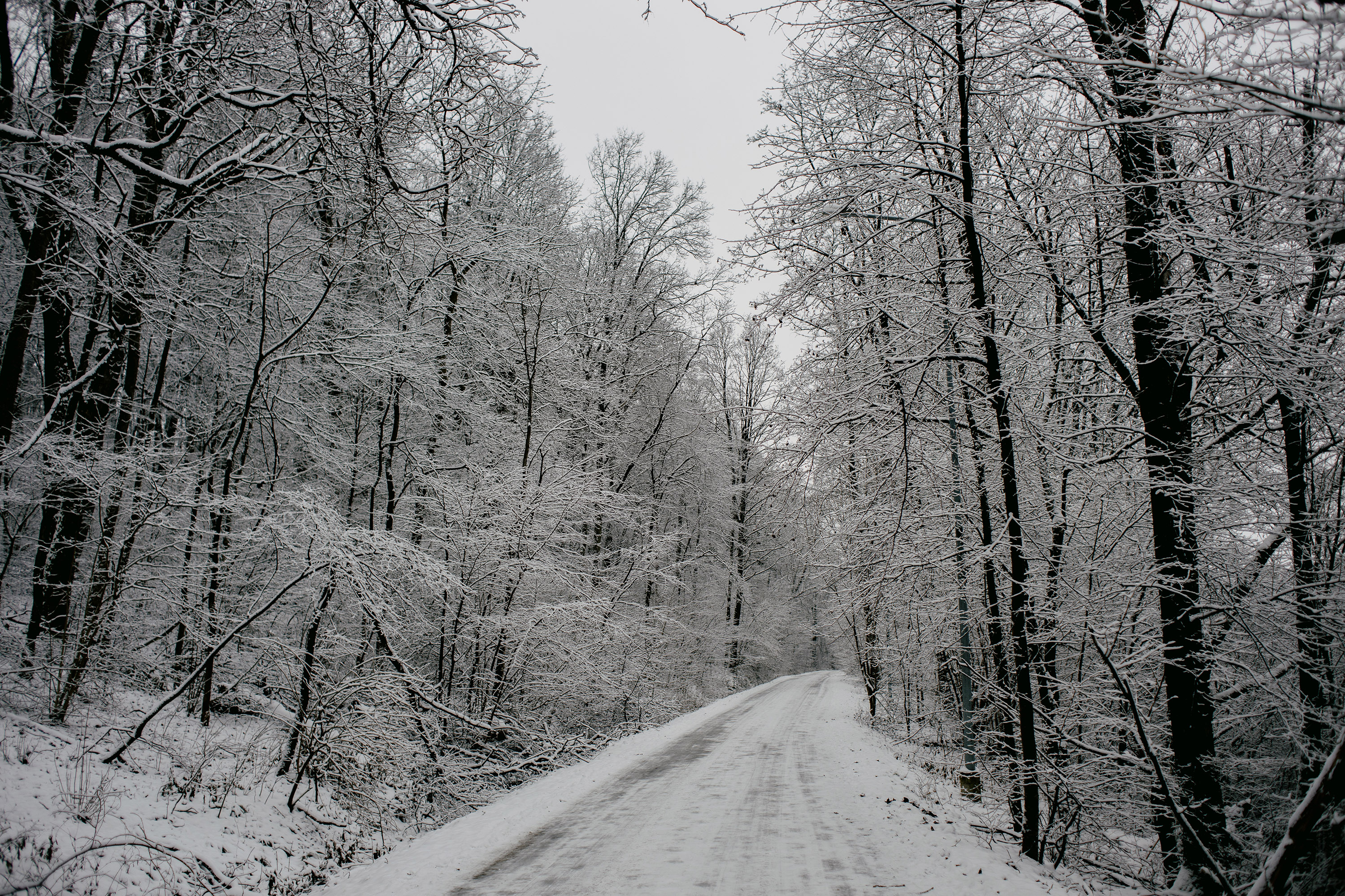 Iced over road in winter